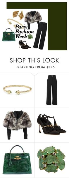 """pfw"" by thedoyenne ❤ liked on Polyvore featuring David Yurman, Veronica Beard, Lolita Lempicka, Manolo Blahnik, Hermès, parisfashionweek and Packandgo"