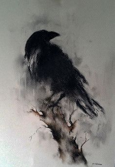 "Original Raven Drawing Charcoal Black and White Art Halloween Gothic Crow on a Branch 12x8"":"