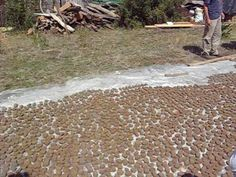 All - On Seed Balls Natural Farming, Permaculture, Balls, Seeds, Nature, Argentina, Naturaleza, Nature Illustration, Off Grid
