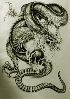 Dragon Tattoo Gallery | Oriental Dragon Tattoo Designs Style 28 - Free Download Tattoo #38231 ...