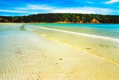 Hornby Island - This magical spot in British Columbia welcomes visitors with myriad beauty of the wilderness and some of the most pristine beaches in the province. Places To Travel, Places To See, Travel Stuff, Butler, Pacific Coast, Pacific Northwest, West Coast, Wanderlust, Vacation Destinations