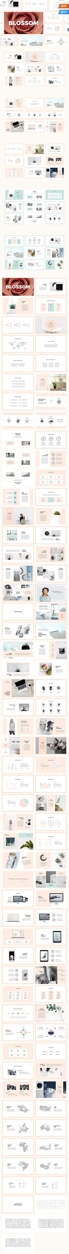 Blossom Presentation Template. Business Infographic
