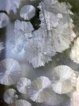 """Crystal Frost Window Paint: You can """"frost"""" a window with Epsom salt crystals, even when it's hot outside. cup Epsom salt (magnesium sulfate) cup hot water few drops liquid dishwashing detergent Epsom Salt Crystals, Diy Crystals, Christmas Holidays, Christmas Decorations, Christmas Ideas, School Holidays, Homemade Christmas, Xmas, Growing Crystals"""