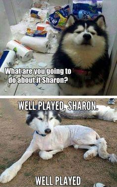 Tushay, Sharon