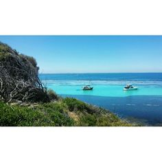 Place to be: Rottnest Island