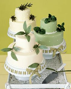 Cakes with herb decorations (sage, basil, rosemary)