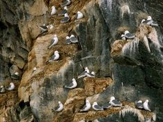 nunavut protected areas