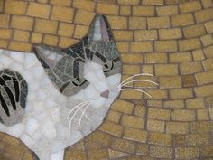 Whiskers or no whiskers? by cbmosaics - Christine Brallier, via Flickr