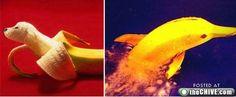 food-art- Fun with bananas