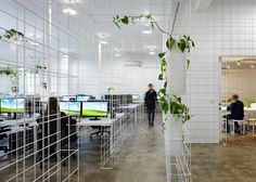 """A wireframe """"matrix"""" defines the working areas inside this Melbourne office."""