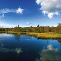 Schöne Wanderwege für diesen Sommer: genieße die Natur Mountains, Sport, Nature, Travel, Tours, Switzerland, Hiking, Losing Weight, Germany