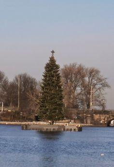 Weihnachts-Textwerkstatt: Wem Gott will rechte Gunst erweisen ...  von Evely...