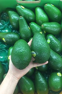 Avocado-Ripening Hack Everyone's Been Talking About 1000 Lifehacks, Healthy Snacks, Healthy Recipes, Fast Recipes, Avocado Recipes, Food Facts, Fruits And Veggies, Vegetables, Baking Tips
