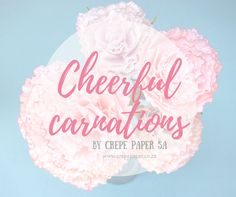 These carnations are so pretty! Crepe paper flowers for any event. www.crepepaper.co.za Crepe Paper Flowers, Carnations, Crafty, Birthday, Handmade, House, Ideas, Birthdays, Hand Made