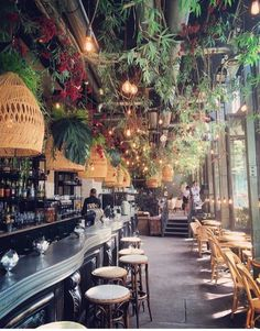 In the mood for design, le Brebant a very special brasserie in Paris