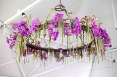 Grapevine roots were the foundation for teardrop glass vessels that hovered over the dance floor with each embellished with vivid magenta orchid blossoms. Photos: Luna Photo. Wedding Coordinator: Thomas Bui Lifestyle. Florals: Adorations Botanical Artistry.