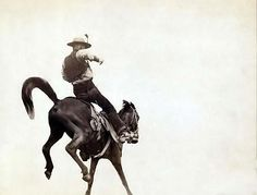 Ned Coy, a famous Dakota cowboy
