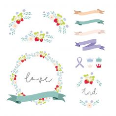 Ribbons and  floral elements collecti Free Vector