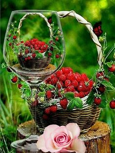 Albert Einstein Quotes, Love Flowers, Aqua, Food And Drink, Strawberry, Basket, Skin Care, Shapes, Amazing