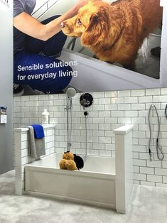 Fiat products doggie bath kbis 2018 kitchens and baths lixil brands