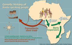 Genetic analysis reveals migration history of early Bantu speakers