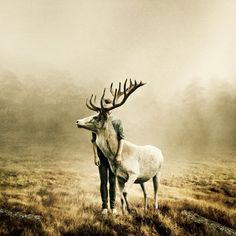 """""""Wait a Little Longer"""" in the photo series """"I Found The Silence"""" by Martin Stranka"""