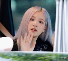 Korean Girl Photo, Blackpink Members, Rose Park, Jennie Lisa, Blackpink Photos, Park Chaeyoung, Korean Girl Groups, Kpop Girls, Singer