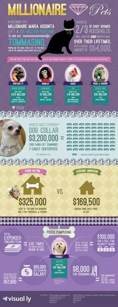 Take a look at how millionaires take care of their pets.