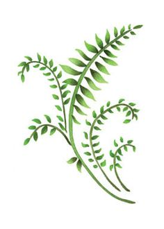"Fern Design | Mini Ferns (3.78"" x 5.4"")"