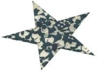 Mercerie | Produits CSM Coudes Thermocollants et pré perforés en forme d'étoiles.  fleuri