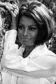 Get the look: Sophia Loren - TV3 Xposé
