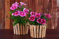 You have to see Gorgeous flower vase of wooden pegs on Craftsy! - Looking for gardening project inspiration? Check out Gorgeous flower vase of wooden pegs by member roober. Mothers Day Crafts, Crafts For Kids, Arts And Crafts, Diy Crafts, Simple Crafts, Flower Planters, Flower Vases, Flower Pots, Do It Yourself Garten