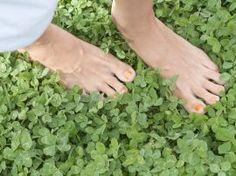 Wasser in den Beinen: Zehn Tipps gegen geschwollene Füße