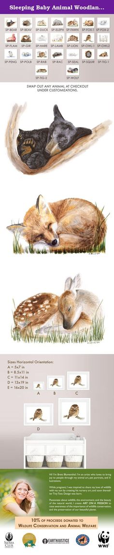 Sleeping Baby Animal Woodland Nursery Print Set of 6 Prints - Wolf, Deer, Bunny, Fox, Raccoon, Bear. This set of 6 prints featuring sleeping baby animalsvis perfect for a woodland nursery and is of my original sleeping baby animal watercolors. It comes with a baby deer, baby bunny, baby fox, baby raccoon, baby bear and baby wolf. QUALITY: The Nursery print is printed using the highest quality archival inks and fine art papers to ensure your woodland nursery art will last and be enjoyed…