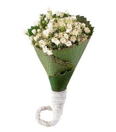 Baby's Breath (Gypsophila) Boutonniere with the added style of Galax leaves rolled into a cone, in with the flowers are nestled.