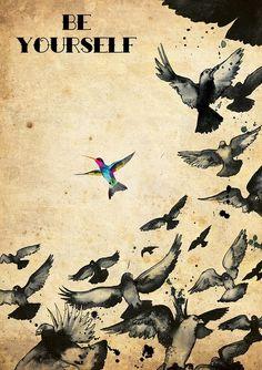I like this because it looks like my hummingbird...