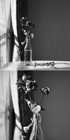 byungwookann:  November Song Yashinon 80mm/f3.5 + Yashica Mat 124G + Kodak PX125(120 Film. B&W)with Close Up Lens No.1 (below)
