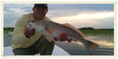 Strip Set Fishing Guides offer highly productive Charleston guided fly fishing or inshore adventures and instructions to anglers of all ages and experience levels. Contact at 251-408-1887 for more details. #fishingguides