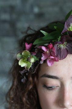Hellebores hair flowers