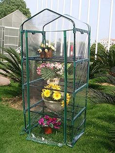 Quictent Hot 4 tier Mini Portable Green Hot Grow Seeds House Indoor Outdoor wShelves Greenhouse *** Want additional info? Click on the image.