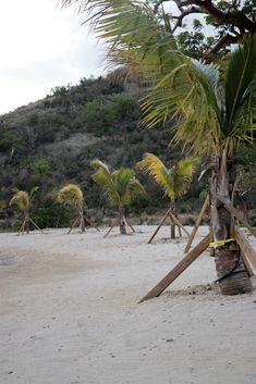 Top 15 Best Activities in the British Virgin Islands ~ Traveling Party of Four Cancun Vacation, Italy Vacation, Romantic Vacations, Romantic Travel, British Virgin Islands Vacations, Nature Secret, Virgin Gorda, Big Island Hawaii, Crystal Clear Water