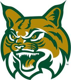 Bobcats Logo – name Mascot Design, Logo Design, Hawk Logo, Construction Logo, Cool Cats, Big Cats, Sports Graphics, Bear Logo, Sports Logos