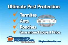 The best #pestcontrol in Central Florida is @BinghamProfessionalPestManagement. We are hopelessly outnumbered when it comes to #pests and #bugs in Florida, A systematic approach of pest control is required to keep bugs at bay. Choosing the right treatment and procedure using pesticide sprays and baits will ensure pests are eliminated from your home in the most efficient manner.