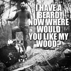 Take it how you will #beardyland