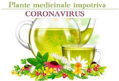 White Wine, Wine Glass, Alcoholic Drinks, Flora, Avocado, Healthy, Tableware, Sciatica, Knives