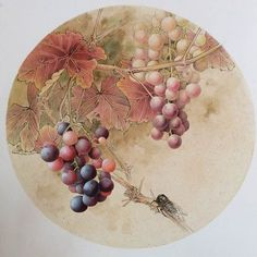 China Art, Placemat, Fruit, Drawings, Tableware, Flowers, China Painting, Dinnerware, Tablewares