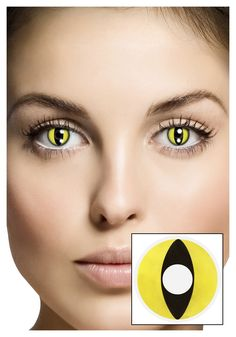 contact lenses contact lenses contact lenses - Google Search