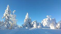 Winterwondeland!