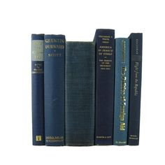 Blue Old Books, Decorative Books , Decorative Book Set , Photo Props , Wedding Book Decor , Book Lover Set, Decades of Vintage  #DecadesofVintage #oldbooks #vintagehomedecor #booksbycolor #decorativebooks #bookshelfdecor #vintagebooks #stagingprop #bookhomedecor #homedecor