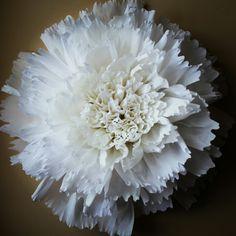 Giant papera flower#whitepeony#handmade#paperartist#crafter#anisa